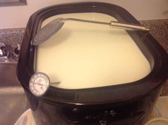 This is the usual set-up of the Roaster Vat, here I am heating the milk