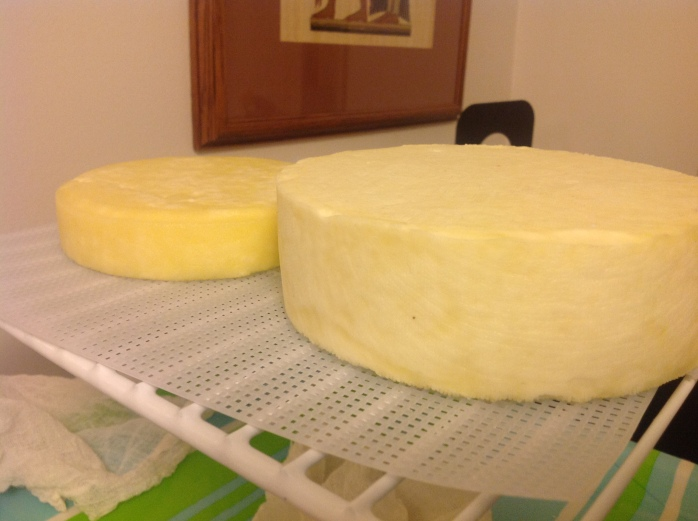 The two cheese during air drying next to the cave.