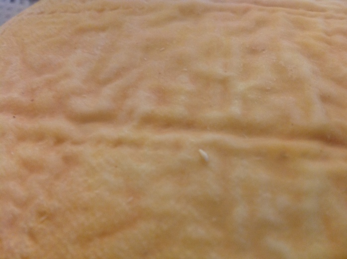 A close up of the rind