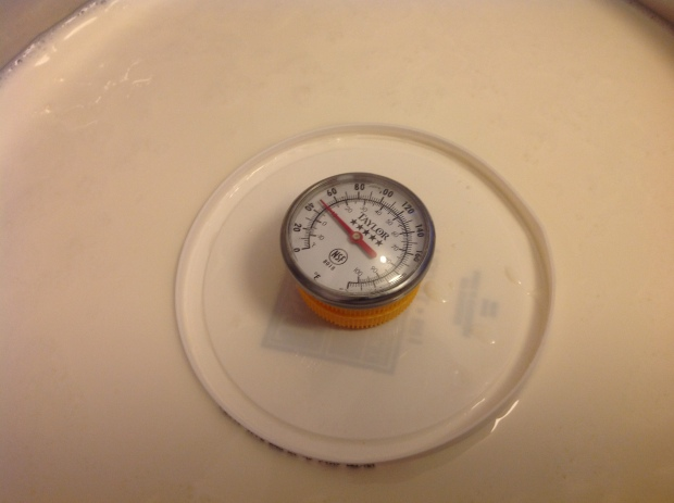 And Voila! A DIY floating thermometer
