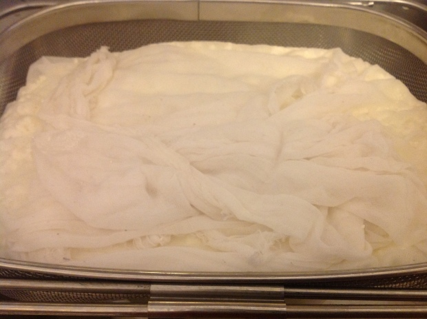 The curd so nice and snug in its cheesecloth blanket