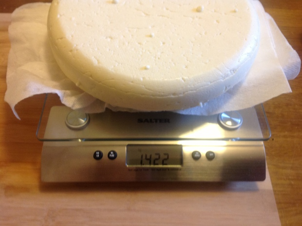 1.4 kg of cheese is not bad, it is less then a 10% yield, but that was to be expected.
