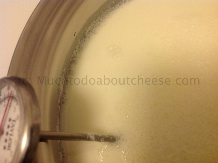 You can see that the citric acid has started to curdle the milk.