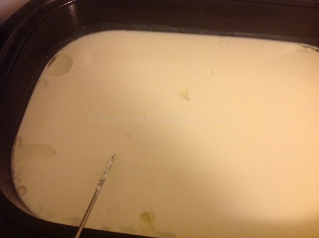 Here is the curd after 6 hours.
