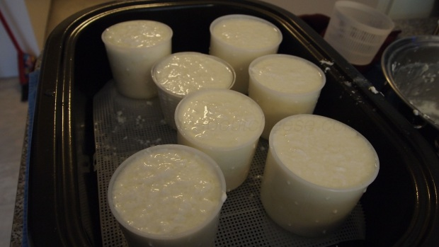 """In the end the curd was a little """"soupy"""" but not as bad as the last batch."""