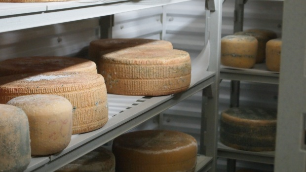 The Cheesiry's Pecorino are all natural rind cheese.  The colour comes from what her ewes are eating.