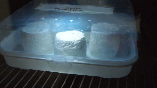 The first Blue Cheese Box
