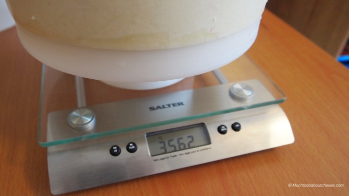 Out of the press the cheese weighed 3562 grams.  Yes I did tare the scale with the follower first.