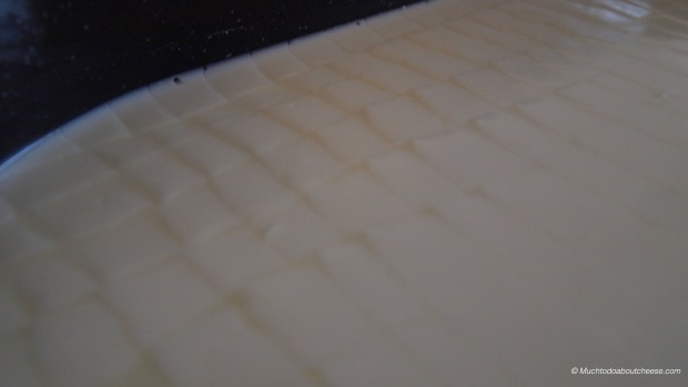 The curd had to be cut to 1 centimeter cubes, I know I cut them a bit larger than that.