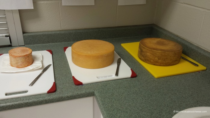 3 Entries in the Washed Rind Category