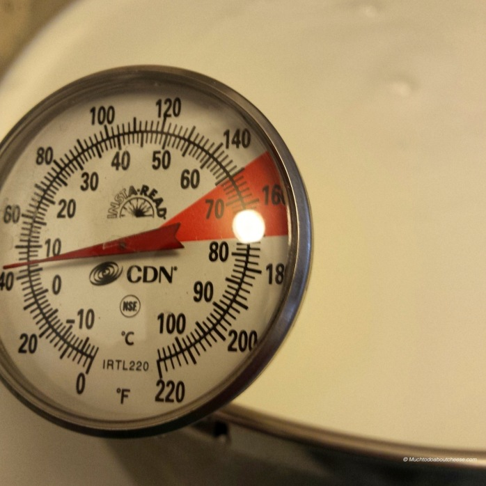 It was a good excuse to tryout my new thermometer that clips to the side of the pot.