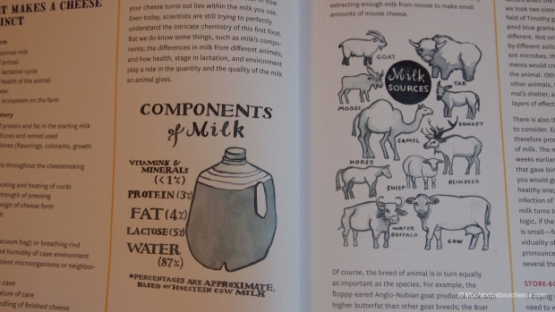 Hand drawn images from the author sets this book apart from other cheesemaking books